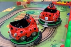 Ladybird Train
