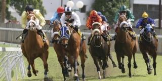 Kentuck racing